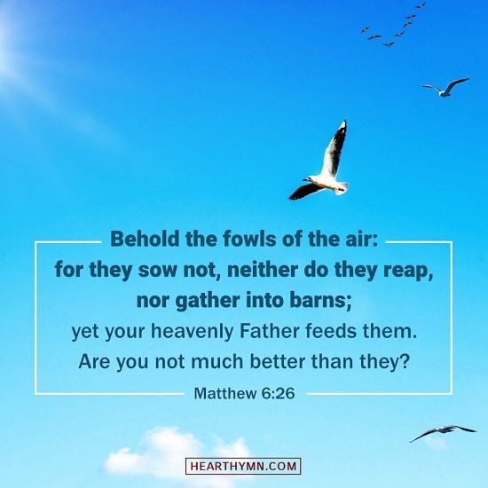 Bible Verse Images for: Flying